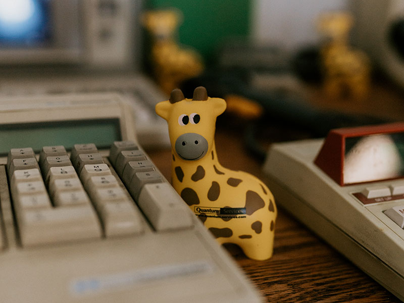 Quantum Services giraffe